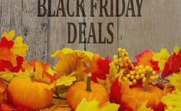 grunge wood with text Black Friday Deals
